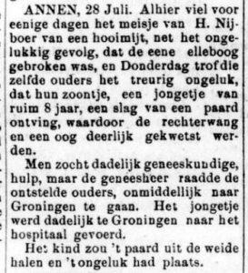1882-08-22 Ongeval kinderen van H.Nijmeijer gewond Kruisstraat 22 Harm Nijboer geb.1839 zoon Harm Nijboer geb.1874