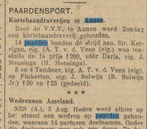 1933-08-05 Volksvermaken paarden race (2)